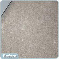 Seattle Area Carpet Cleaning Specialists Custom Solutions